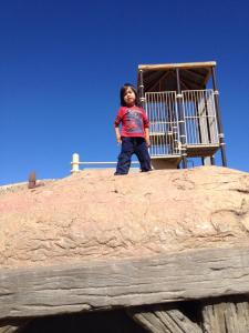 Jack at the top of a hill with a multistory treehouse in the background
