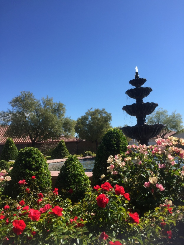 photo description, rose bushes with a talll fountain behind them with a clear blue sky